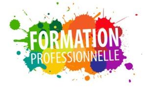 Mercredi 10 juillet 09 heures - Groupe de travail Formation Professionnelle