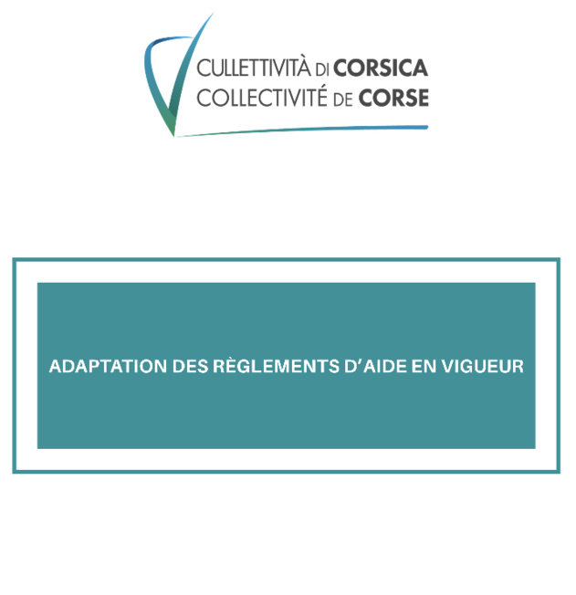 Adaptation des règlements d'aide en vigueur à l'attention des associations
