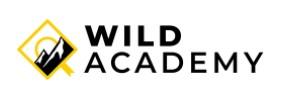 Cours photos gratuits proposés par Wild Academy pendant le confinement