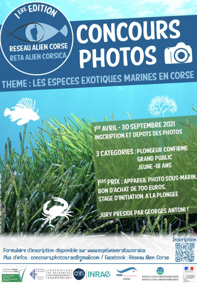 Réseau Alien Corse : lancement de la 1ère édition du concours photos