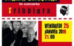 Carmin Belgodère en concert