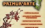 """Festival culturel insulaire """"PRIMUR'ARTE"""" - Sollacaro"""