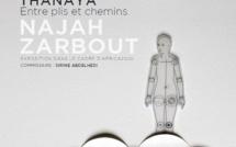 """Reportage à l'occasion de l'exposition Africa 2020 au Frac Corse réalisé par """"ViàTéléPaese"""""""