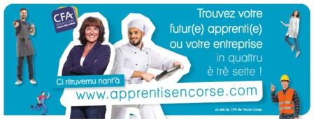 Apprentisencorse.com : nouvelle plateforme de mise en relation professionnelle.