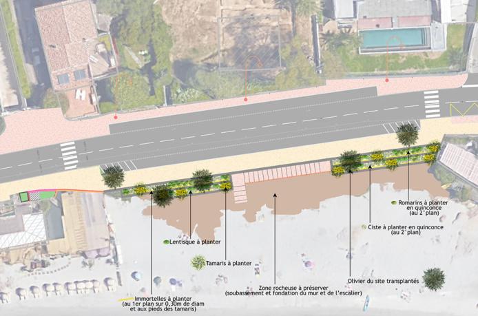 Plan aménagement paysager Barbicaja