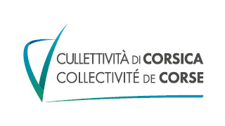 Election des représentants professionnels des assistants maternels et des assistants familiaux à la Commission Consultative Paritaire de Corse