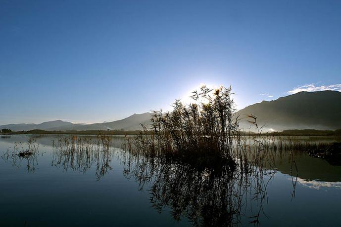 Festa di a natura 2020 à a riserva naturale di u stagnu di Chjurlinu in Biguglia
