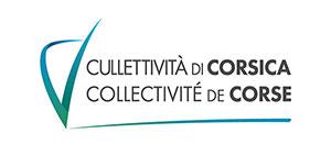 Mise à 2x2 voies de la RT20 entre le giratoire de la Gravona et le futur carrefour de Mezzana et l'aménagement des giratoires intermédiaires de Caldaniccia, d'EFFRICO et d'Afà : concertation préalable obligatoire