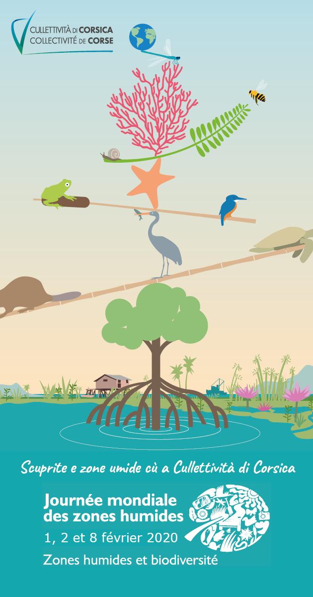 Zone umide - Journées mondiales des zones humides 2020