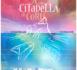 https://www.isula.corsica/Exposition-Museu-di-a-Corsica-A-citadella-di-Corti-Une-citadelle-pour-horizon_a1077.html