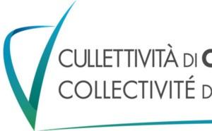 Stallazioni di u novu Cunsigliu ecunomicu, suciali, ambiintali è culturali di Corsica  (u CESEC) à u 1u trimestru di u 2018