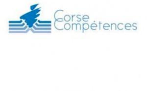 Consultation publique - GIP Corse Compétences : réalisation d'enquête : l'insertion professionnelle des stagiaires sortants du PRFP 2016-2017 en Corse