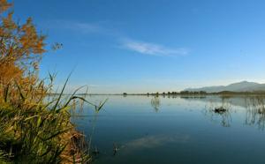 Journées Mondiales des zones humides