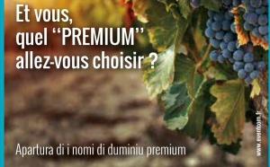 Ouverture sur internet des noms de domaine Premium en .corsica