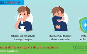 Activation du plan de continuité d'activité (PCA) de la Collectivité de Corse, liée à l'épidémie de Coronavirus-Covid19