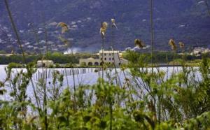 Réouverture de l'écomusée du Fortin et découverte de la réserve naturelle de l'étang de Biguglia